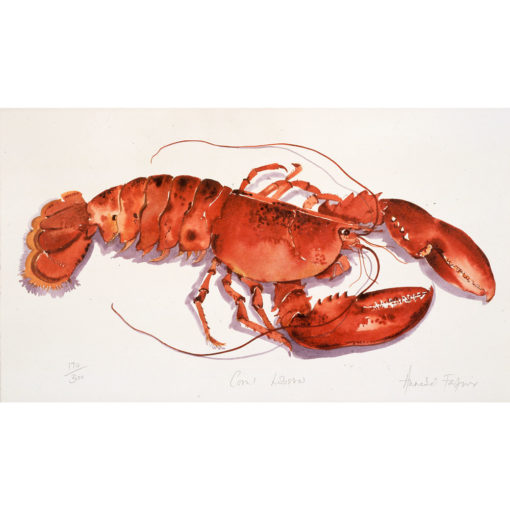 Coral Lobster